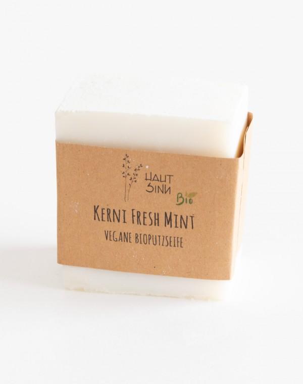 Putz u.- Geschirrspülseife Fresh Mint